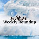 weekly roundup - Jan 10