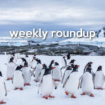 Weekly Roundup - Apr 4, 2021